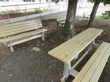 新しくなった校庭のベンチ